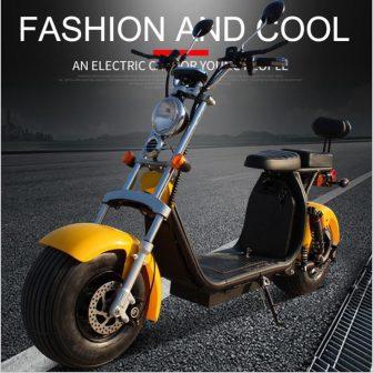 60 V 1500 W bicicleta eléctrica coches Harley adulto ebike coche eléctrico...