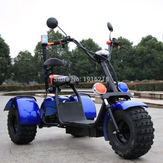 60V20AH batería de litio motocicleta eléctrica Scooter Doble amortiguador 3 ruedas neumático...