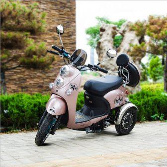 Adulto triciclo eléctrico 350 W * 2 motor motocicletas eléctricas llave inteligente...