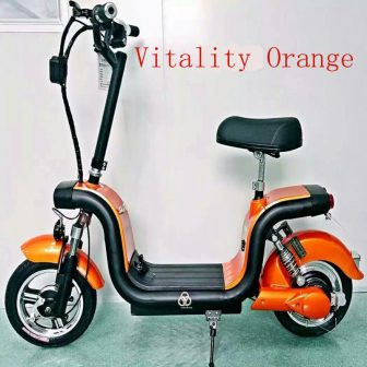 Adultos Scooter Eléctrico bicicleta eléctrica Citycoco adulto de dos ruedas litio con...