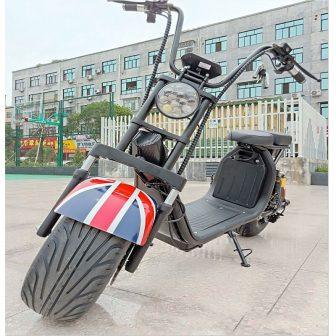 Eléctrico de la motocicleta bicicleta Citycoco scooter Eléctrico motor de 1500 W...