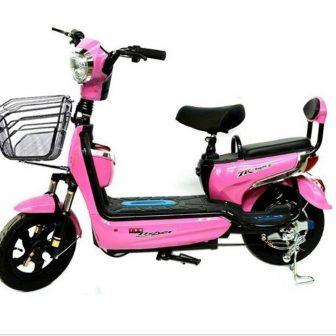 Los vehículos eléctricos Mini coches de batería para bicicletas eléctricas de dos...
