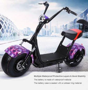 Moto Scooter Adulto E-bici Eléctrica de La Fábrica de la Venta 1000...