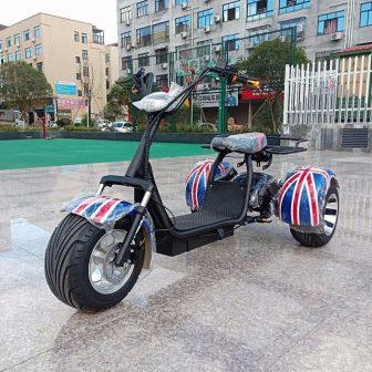 Motocicleta bicicleta eléctrica Citycoco scooter Eléctrico de tres ruedas motor 1500 W...