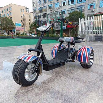 Motocicleta bicicleta eléctrica Citycoco scooter Eléctrico tres ruedas motor 1500 W batería...
