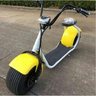 Motocicleta bicicleta eléctrica scooter Eléctrico Citycoco batería de litio protección del medio...