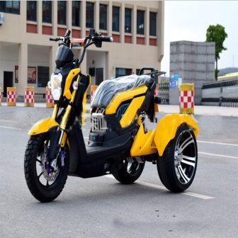 Motocicleta bicicleta eléctrica scooter Eléctrico citycoco motor triciclo tres ruedas motocicleta eléctrica...
