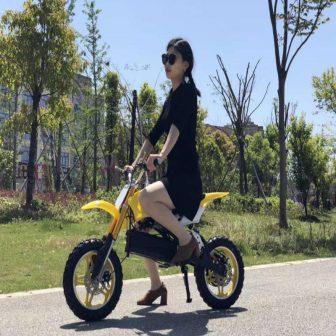 Motocicleta eléctrica 48 V 300 W accesorios del coche camping ciudad coco...
