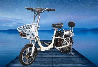 Motocicleta eléctrica 48V12A ambiental Litio-ion diseño de cuero suave adecuado para montar...