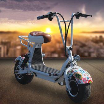 Motocicleta eléctrica 48V12A bicicletas plegables resistencia 25 km fácil de llevar es...