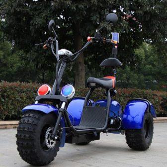 Motocicleta eléctrica 60 V potencia máxima 1000 W accesorios del coche camping...
