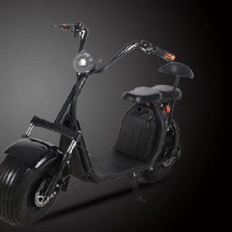 Motocicleta eléctrica 60V20A 1500 W ambiental batería de iones de litio doble...