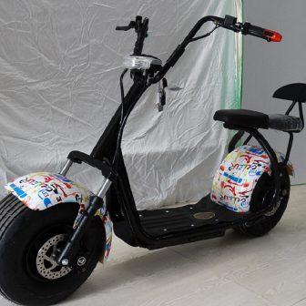 Motocicletas eléctricas 60 V 20A 1000 W accesorios del coche Camping Citycoco...
