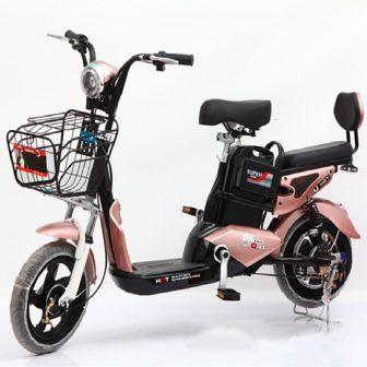 Motocicletas eléctricas Scooter 48 V 12A accesorios de coche Camping Citycoco Multi...