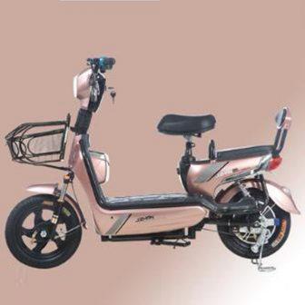 Nuevo coche eléctrico para bicicleta eléctrica 48 V batería pequeña coche hombres...