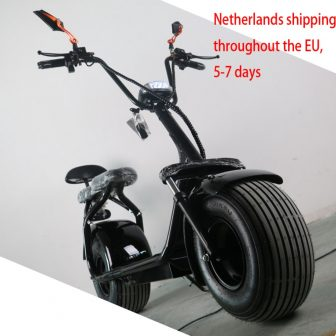 SC03-1/adultos litio scooter mini/retrovisor/con velocidad/Harley eléctrico coche/Moto/ scooter/